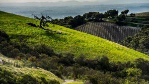 Eroica California 2019 @ Eroica California | Cambria | California | United States